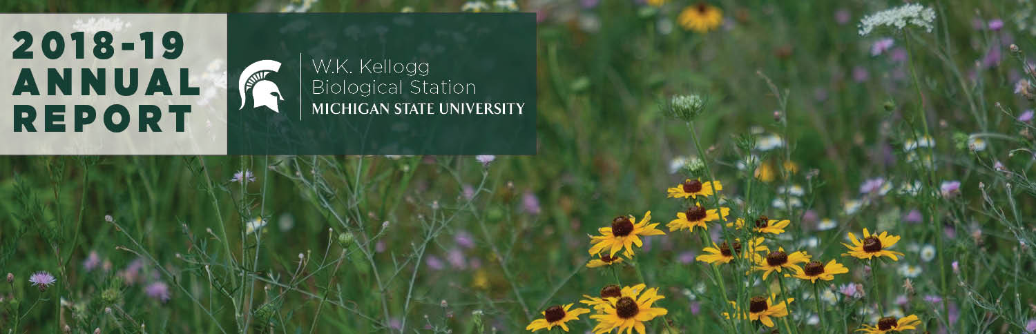 Image of the 2018-19 W.K. Kellogg Biological Station annual report, featuring a field of native flowers and a banner that says, 2018-19 annual report.