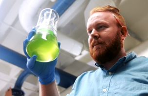Algae: Brewery Wastewater's Second Chance