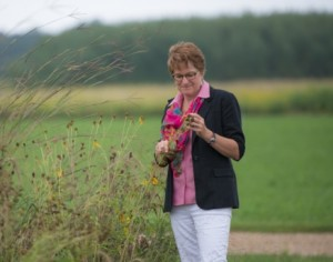 Katherine L. Gross stands near a field, examining the seed head of a flower.