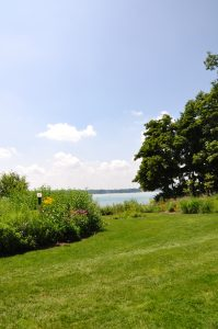 Lakeshore landscaping to protect water quality