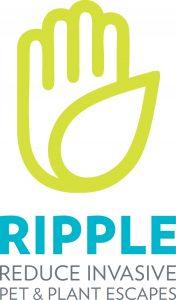 DFW_Logo_CMYK_4c