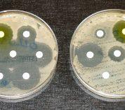 Antibiotic resistance lesson