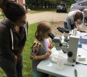 Science gets hands-on at BioBlitz