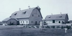 Historical photo of barns at Kellogg Farm