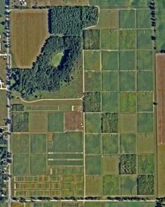 Photo of LTER cropping system sites
