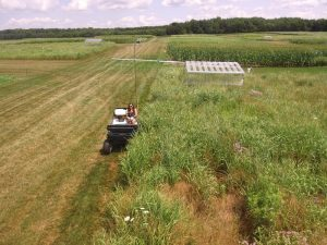 KBS REU Emily Lindback taking albedo measurements over native grasses, photo taken by drone.