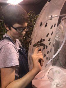 Student Hansen with hornworm moth