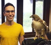Chasing birds and change: Reflections of a KBS avian care intern