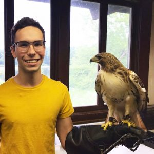 KBS avian care intern, wearing a yellow shirt, poses with a red-tailed hawk perched on his arm.