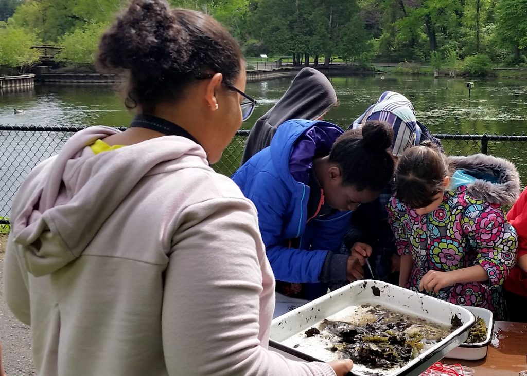 Karina Cortijo-Robles helps high school students find macroinvertebrates in Wintergreen Lake.