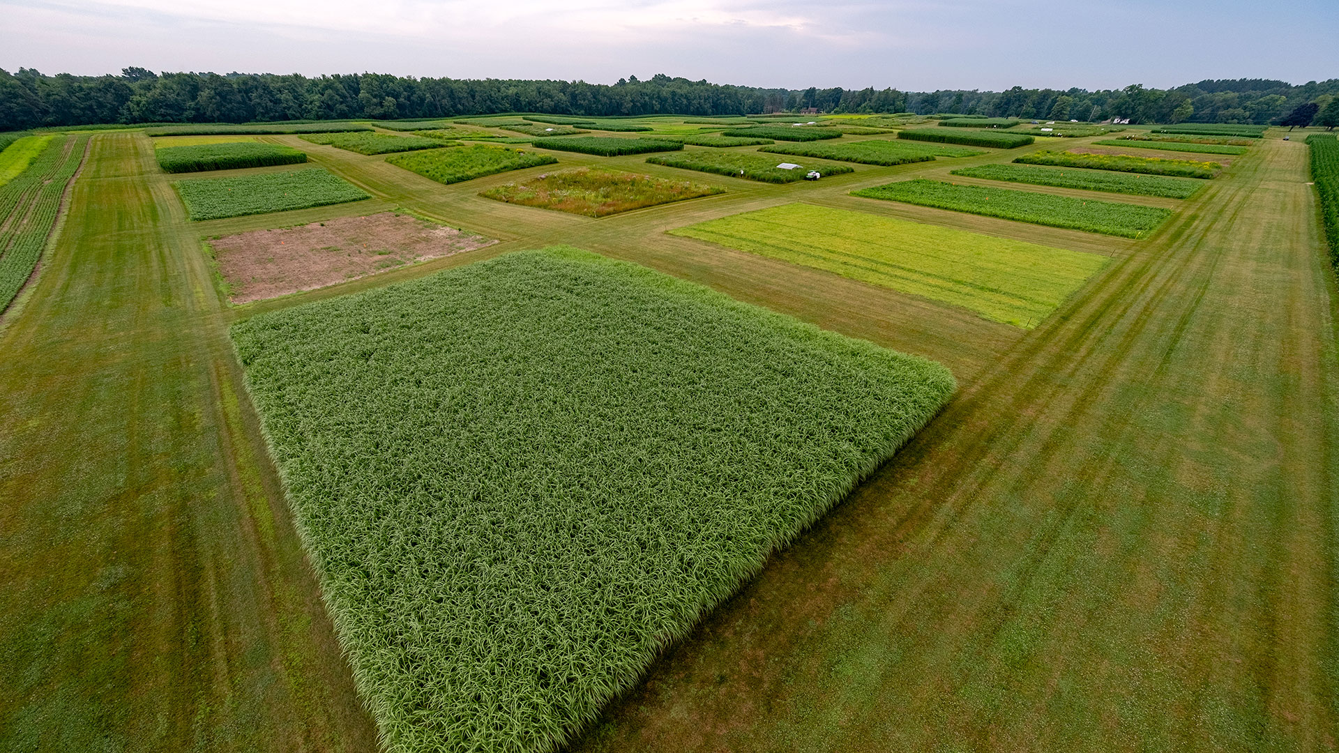 Aerial view of the KBS-based Great Lakes Bioenergy Research Center site.