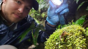 """Kyle with Coyne's Harlequin Frog (Atelopus coynei) near a stream in Ecuador in 2019. This frog was """"missing"""" from 1984-2012. Photo Credit: Alex Achig-Vega"""