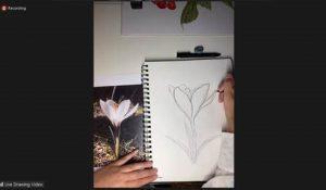 Screenshot of nature journaling webinar, showing a hand holding a pencil, sketching.