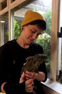 Postdoctoral research associate A. Carter holds a tuatara (Sphenodon punctatus)..