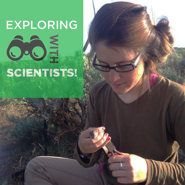 Elizeth Cinto-Mejía sits outdoors, looking down at a banded bird she's holding. Text overlay reads Exploring with Scientists.