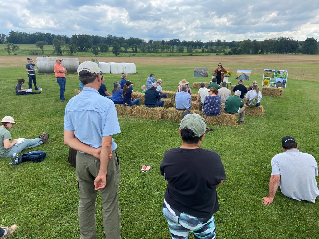 People stand in a mowed field or sit on hay bales while Corinn Rutkoski, graduate student at KBS, leads a discussion around prairie strips at the first MiSTRIPS event, held at Hasenick Brothers Farm.